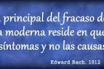 Terapia de las flores de Bach para tratar las emociones
