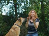 La nueva vida de Rubio, el perro callejero que se fue a Alemania