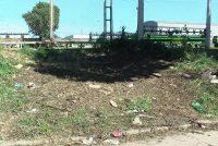 Luego de tres meses de reclamo, finalmente fueron recolectadas las ramas en predio de calle Garibaldi entre Rivadavia y ruta 9