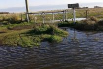 Lluvias y campos inundados al sur de Marcos Juárez