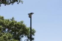 Destruyeron tres cámaras de seguridad ubicadas en Plaza la Madre de Leones