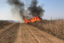 Incendio de pastizales  a orillas de las vías férreas entre Marcos Juàrez y General Roca