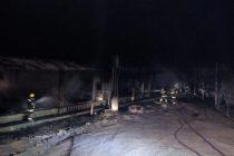 Leones: Incendio en galpón utilizado como paridera de cerdos