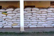 Robo de 200 bolsas de semillas en un establecimiento rural en San Marcos Sud