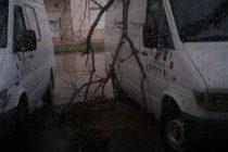 Trabajos en la Ciudad luego de la lluvia y el intenso viento del sábado de 102 KM