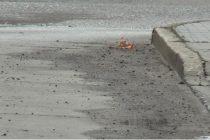 Reclamo por banquinas de ruta 9 con arena y piedra