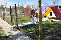 Hospital escuela: Futuros veterinarios realizarán sus prácticas profesionales en el CAM de Villa Maria