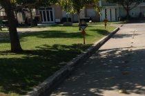 Inquietud de vecino sobre estacionamiento de vehículos  en zona de tachas en Plaza Sarmiento